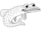www.raubfischspezi.com
