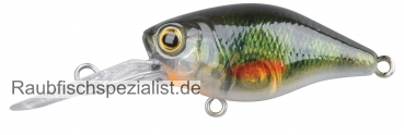 "Ikiru Mini Crank Long Lip ""Green Perch"""